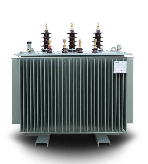 ABB 100KVA 11/0.415KV Distribution Transformer-0