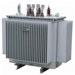 Astor 100KVA 11/0.415KV Distribution Transformer-0