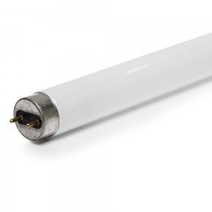 Philips Fluorescent Tube 36w 4ft Tube-0